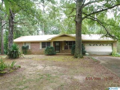 13808 AL HIGHWAY 117, HENAGAR, AL 35978 - Photo 1