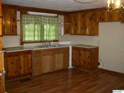 408 LONG HOLLOW RD, SCOTTSBORO, AL 35768 - Photo 2
