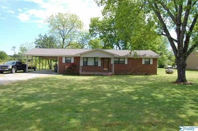 8904 HIGHWAY 36, DANVILLE, AL 35619 - Photo 1