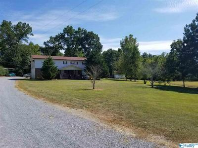 17639 AL HIGHWAY 75, HENAGAR, AL 35978 - Photo 1