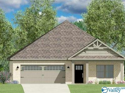 29919 COPPERPENNY DRIVE, HARVEST, AL 35749 - Photo 1