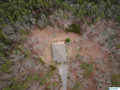 196 S LULA FORREST TRL, RISING FAWN, GA 30738 - Photo 1