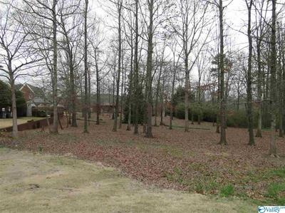 0 HICKORY HILL DRIVE, Arab, AL 35016 - Photo 2
