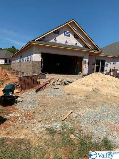 29747 COPPERPENNY DRIVE, HARVEST, AL 35749 - Photo 2