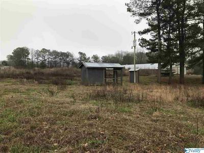 860 COUNTY ROAD 1240, VINEMONT, AL 35179 - Photo 1