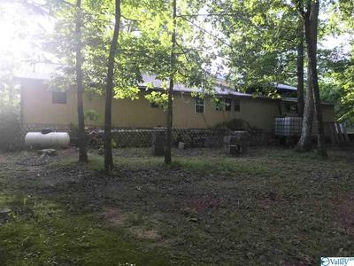 431 HIGH RD, MENLO, GA 30731 - Photo 2