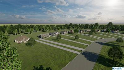 3602 CREEK PATH RD, GUNTERSVILLE, AL 35976 - Photo 1