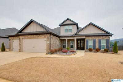 3008 CHIMNEY COVE CIR, Brownsboro, AL 35741 - Photo 1