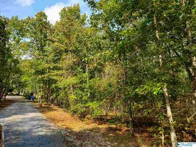 4A COUNTY ROAD 106, MENTONE, AL 35984 - Photo 1