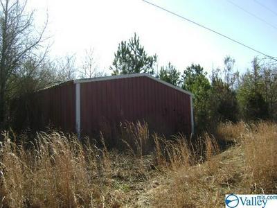 1143 COUNTY ROAD 1383, FALKVILLE, AL 35622 - Photo 2