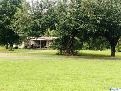699 HOWELL HILL RD, FLINTVILLE, TN 37335 - Photo 1