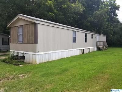 6204 HIGHWAY 53, TONEY, AL 35749 - Photo 1