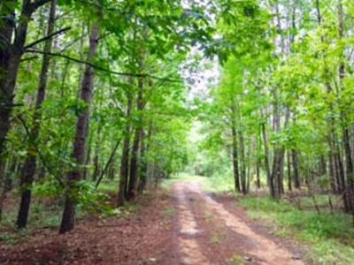 00 POPLAR HILL ROAD, Fayette, MS 39069 - Photo 1