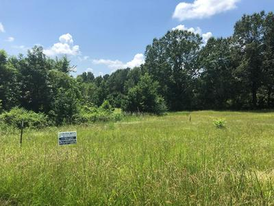 00 CANNONSBURG ROAD, Fayette, MS 39069 - Photo 1