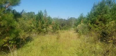 00 STAMPLEY ROAD, Roxie, MS 39661 - Photo 1