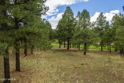 1976 E BARE OAK LOOP, Flagstaff, AZ 86005 - Photo 2