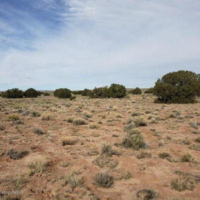 10 ROUTE 2007 LOT 10, Chambers, AZ 86502 - Photo 2