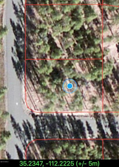 1085, Williams, AZ 86046 - Photo 2