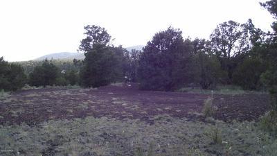 7507 N 8 MILE BLVD, Williams, AZ 86046 - Photo 2