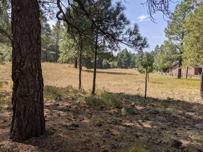 2280 BEV MILLER # 201, Flagstaff, AZ 86005 - Photo 1