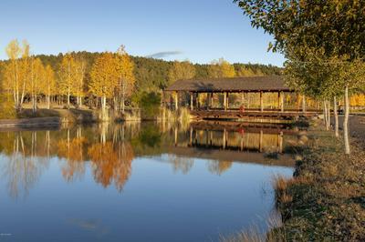 18005 S DIXIE LN # 48, Munds Park, AZ 86017 - Photo 2