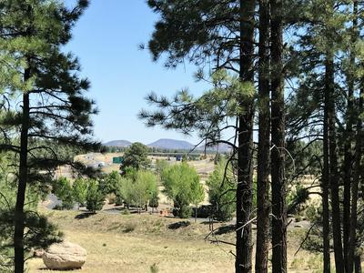 1037, Williams, AZ 86046 - Photo 2