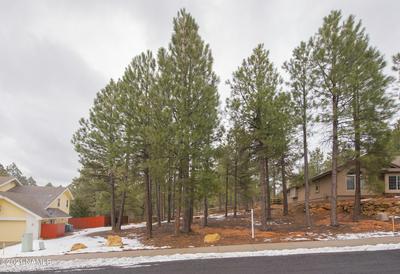 2416 N WHITE PINE DR, Flagstaff, AZ 86004 - Photo 2