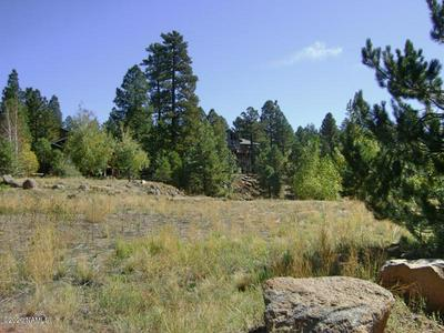 965 E PINEWOOD BLVD, Munds Park, AZ 86017 - Photo 2