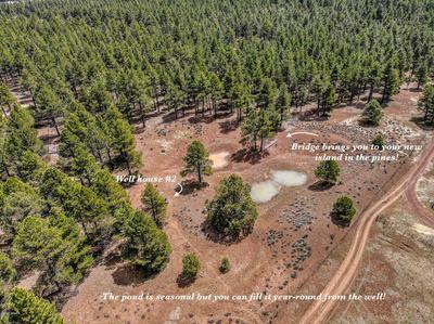6663 SCOUT CAMP RD, Parks, AZ 86018 - Photo 2