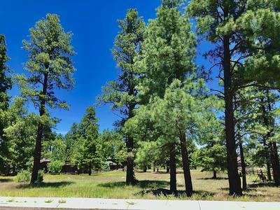 2830 W HIGHLAND MEADOWS DR, Williams, AZ 86046 - Photo 1