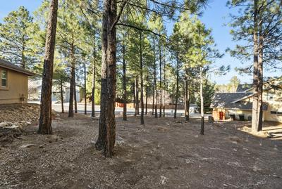 2416 N WHITE PINE DR, Flagstaff, AZ 86004 - Photo 1