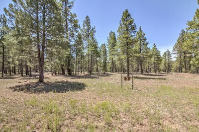 22846 FOX RANCH ROAD # 2, Munds Park, AZ 86017 - Photo 1