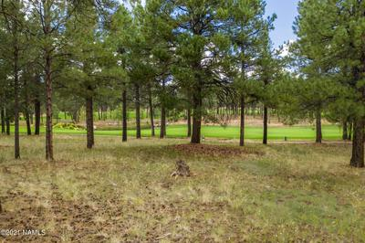 1984 E BARE OAK LOOP, Flagstaff, AZ 86005 - Photo 2