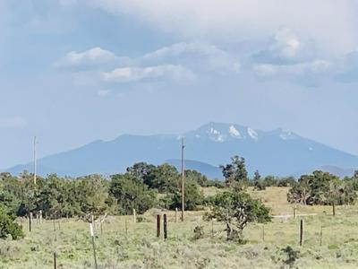 5150 N WOODLAND VIEW RD, Williams, AZ 86046 - Photo 2