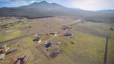 7160 W DREAMVIEW TRAIL, Flagstaff, AZ 86001 - Photo 2
