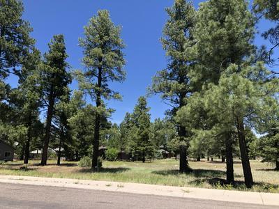 2830 W HIGHLAND MEADOWS DR, Williams, AZ 86046 - Photo 2