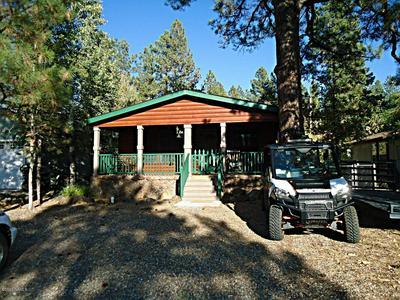 17075 GRIZZLEY RIDGE RD, Munds Park, AZ 86017 - Photo 2