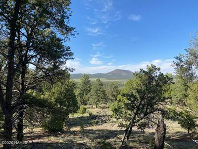 1655 E LOMAKI - 13 AC LOT LANE, Williams, AZ 86046 - Photo 1