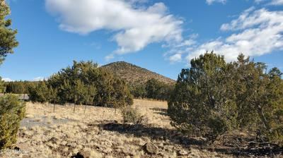 10054 N STATE HIGHWAY 64, Williams, AZ 86046 - Photo 1