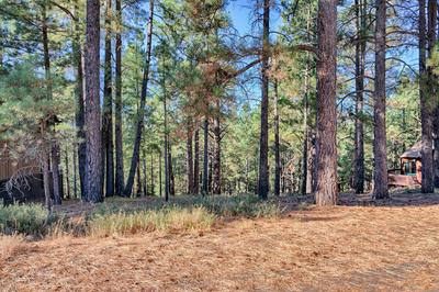 2892 KLETHA TRL, Flagstaff, AZ 86005 - Photo 2