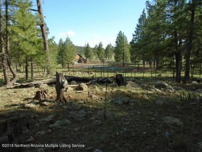 PARCEL A E FOX RANCH ROAD, Munds Park, AZ 86017 - Photo 2