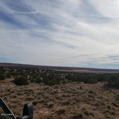 10 ROUTE 2007 LOT 10, Chambers, AZ 86502 - Photo 1