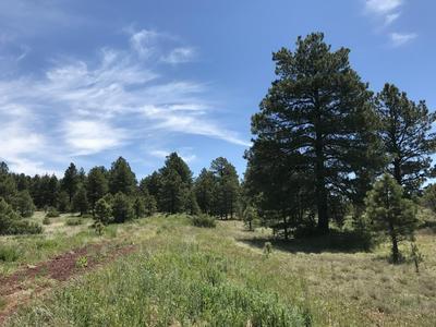 161 S ANSLEY LN, Parks, AZ 86018 - Photo 1