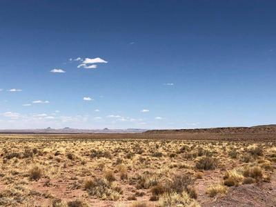 8937 W WILLAUER LANE, Winslow, AZ 86047 - Photo 1