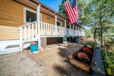 4449 CANYON LOOP, Flagstaff, AZ 86005 - Photo 1