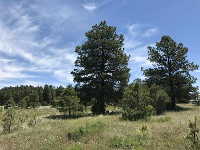 161 S ANSLEY LN, Parks, AZ 86018 - Photo 2