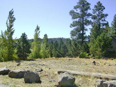 965 E PINEWOOD BLVD, Munds Park, AZ 86017 - Photo 1