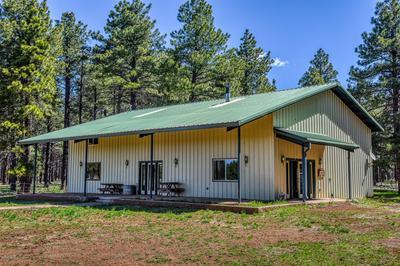 12363 S BLUEBIRD MEADOW RD, Parks, AZ 86018 - Photo 2