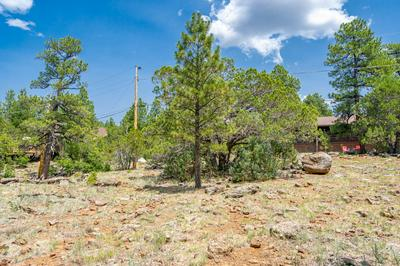 1140 E CACTUS WREN CIR, Munds Park, AZ 86017 - Photo 2