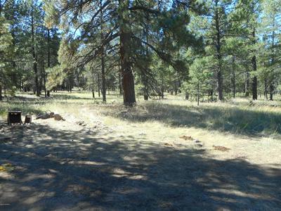 FOUR LOST BOULDERS ESTATES, Munds Park, AZ 86017 - Photo 1